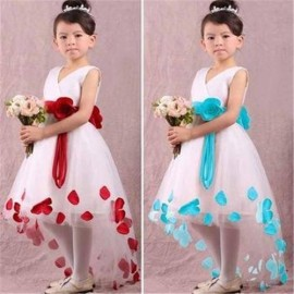 2014 New Summer Frozen Dress Fashion Reverie Girls Dresses Princess Girls Full Dress 5 pieces / lot 1090 dresses dress up dress bodycon dresses looks