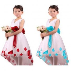 Retail! New 2014 baby girls dresses children clothing cotton ball gown dress kids bow lace princess clothes 5colors high quality dresses everyday clothes size clothes japanese